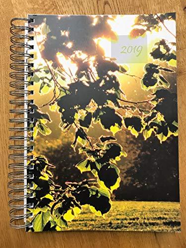 Dicker TageBuch Kalender 2019   Blätter in der Abendsonne   Endlich Genug Platz Für Dein Leben   1 Tag Pro DIN A4 Seite
