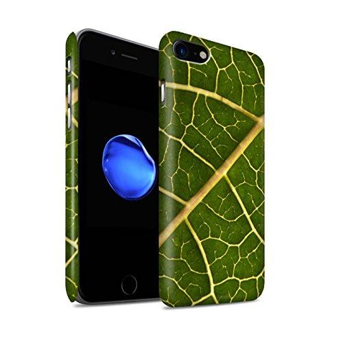 STUFF4 Matte Snap-On Hülle / Case für Apple iPhone 8 / Sonnenuntergang Muster / Britisch Landschaft Kollektion Grünes Blatt