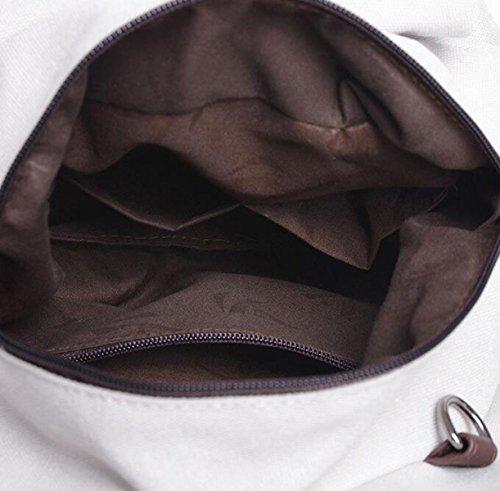 Der Beutel Der Beiläufigen Art Und Weise Der Frauen Beiläufige Art Und Weise Der Segeltuchschulterbeutel Grey