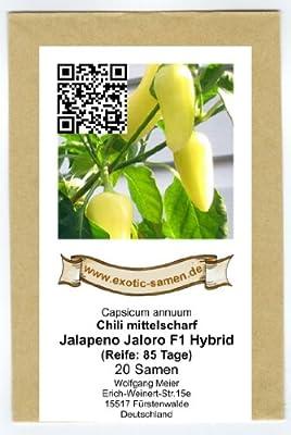 Eine gelbe Jalapeno-Sorte - Jalapeno Jaloro F1 Hybrid - 20 Samen von exotic-samen auf Du und dein Garten