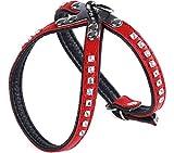 Garronda Hundegeschirr aus weichem Leder 624+ (Rot/Schwarz, S (35 cm))