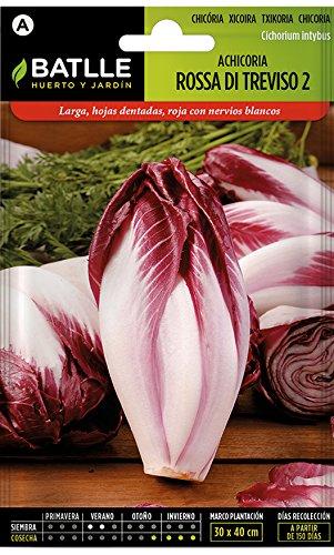 battle - semi ortaggi radicchio rossa di treviso (3200 semi)