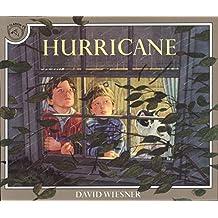 Hurricane by David Wiesner (1992-08-24)