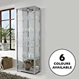 Silver Double Glass Door Display Cabinet with 4 Moveable Glass Shelves & Spotlight Best Review Guide