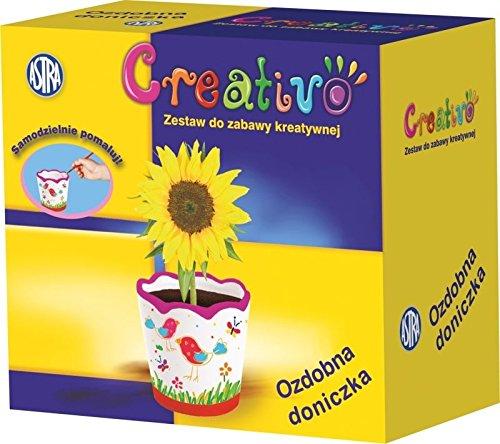 Preisvergleich Produktbild Maxi & Mini–cofret die Übertopf Hat Dekorativ Hat Malen Spiele lehrreich und kreative Aktivität Handbuch
