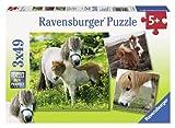 Ravensburger 09428 - Freundliche Ponys