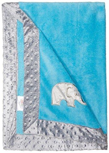 bacati elefantes mantas Aqua with Grey Border