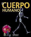 El cuerpo humano (¿Qué es?)