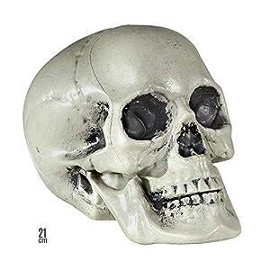 Widmann 01379 - cráneo de plástico, tamaño de alrededor de 21 cm
