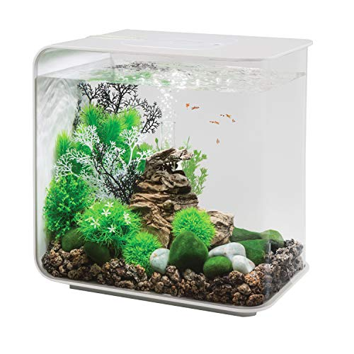 biOrb Flow Aquarium mit LED-Licht, 8 gallon/30 Liter, weiß -