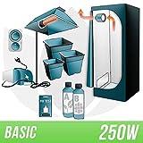Basic-Kit Gewächshaus für den Innenbereich, 250 W, inklusive Growbox