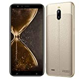 Moviles Libres 4G v·Mobile J6 Smartphone (Pantalla 6.0' 18:9 HD Dual Sim 4800mAh 2GB + 16GB Cámara 8MP Face Unlock Android 7.0 Ofertas del Dia Comunicación Móvil y Accesorios (Oro)