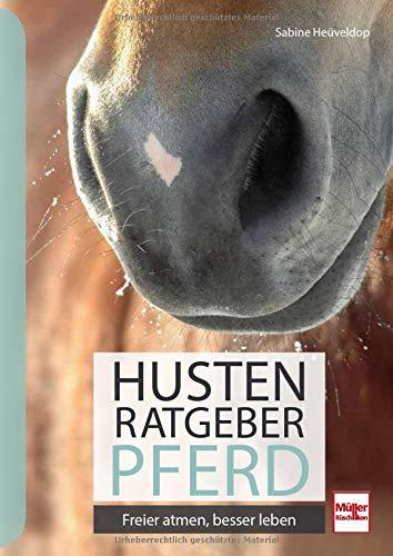 Husten-Ratgeber Pferd: Freier atmen, besser leben