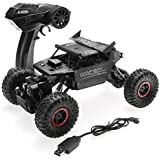 IndusBay 1:12 RC Cars Monster Truck 4WD Dual Motors Rechargeable Off Road Remote Control Truck (Black)