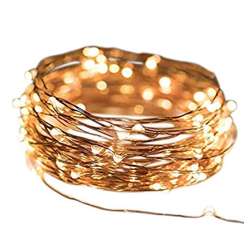 Micro LED lichterkette warmweiß Draht-Lichterkette Leuchtdraht mit mini Tropfen auf Silberdraht Weihnachtsbeleuchtung (80er LED Strom) (Niedrige Runde Glas-vase)
