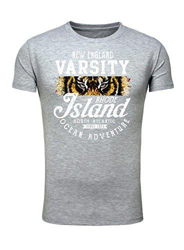 Legendary Items Herren T-Shirt Rundhals kurzarm Tiger Animalprint Grau