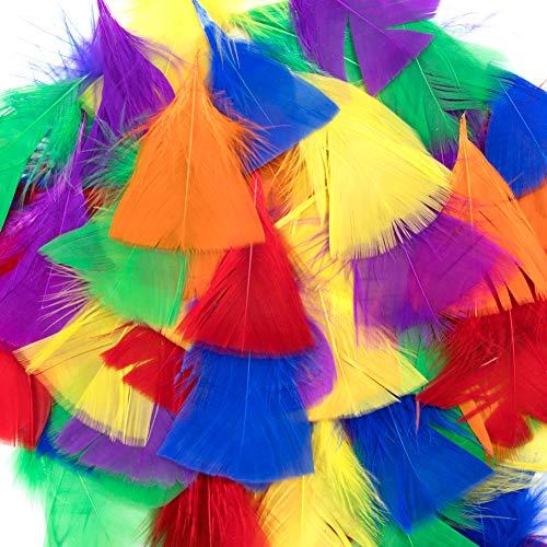 Vidillo Bunte Federn, 300 Stück bunt Gänsefedern, ideal als Dekoration zum Karnival für Halloween Fest Masken, Kostüme und Basteln für Kinder, Sicher und Ungiftig und Nicht verblassen (Groß)