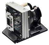 Glamps RLC-079Ersatzlampe mit Gehäuse für VIEWSONIC PJD7820HD Projektoren