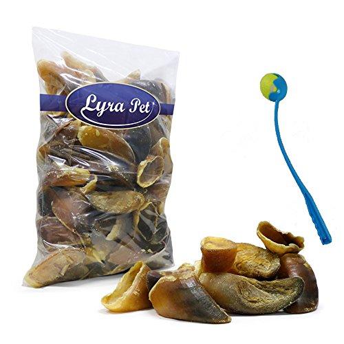 Lyra Pet 200 Stück Rinderhufe Kalbshufe ungefüllt Hufe Futter + Ballschleuder