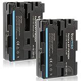 Blumax 2X NP-FM500H (1650mAh) Akku kompatibel mit Sony Alpha A57 A58 A65 A65V A68 A77 A77V A99 A99 II UVM 7,4V 12,2Wh mehr Leistung als Original akku