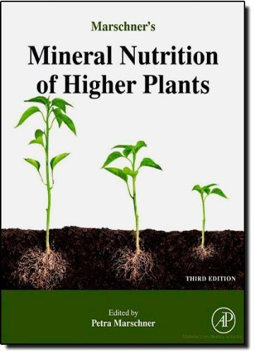 Marschner's Mineral Nutrition of Higher Plants by Petra Marschner (2011-01-08)