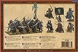 Warhammer Elfi Oscuri Corsari dell'Arca Nera wh fantasy