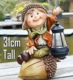 #1: Wonderland Boy Holding Solar Light Lantern (Garden or home decor , gifting , gift)