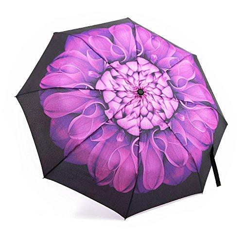 Regenschirm, OakLeaf Auf-Zu-Automatik Taschenschirm, sturmsicher wasserabweisende, Mini, Leicht, Kompakt Violett Daisy Blumen-Motiv Damenschirm (Golf Taschen Billig)