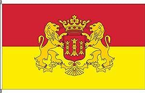 Flagge Fahne Bannerflagge Lingen (Ems) - 80 x 200cm