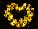 Denknova® 30 LED Rosen Lichterkette warm weiß Innen Im Freien Beleuchtung für Garten Rasen Bar Verein Hochzeit Valentinstag Weihnachten Schlafzimmer Innendekoration 31V