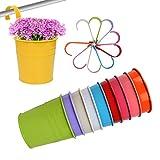 QUMAO 10 Stück/10 Farben Hängetöpfe Set Blumentöpfe (mit Haken) Pflanztopf Verschiedene Farben für Balkon Metall Hängend auf Fenster Garten
