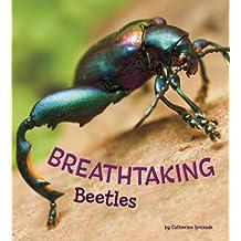 Breathtaking Beetles (A+ Books: Marvellous Minibeasts!)
