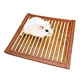 Mascotas Large Juguete para Erizo Suministros TOHHOT Rueda de Ejercicio de 30 cm h/ámster Azul Conejo