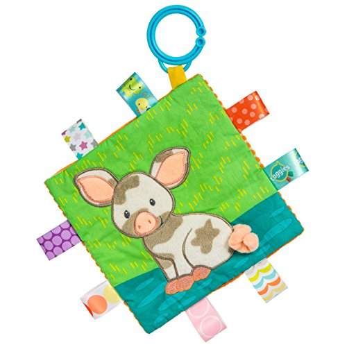 Crinkle-design (Mary Meyer 40036 Taggies Crinkle me Baby Spielzeug, Patches Pig)