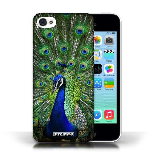 Kobalt Lupo stampato Custodia Cover per Apple iPhone 5C cellulari telefoni / Collezione Animali selvatici Pavone