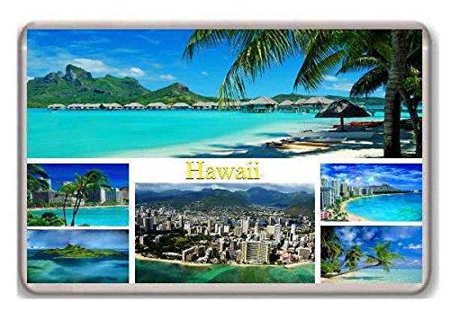 Kühlschrank Hawaii (Hawaii/fridge/magnet!!!! - Kühlschrankmagnet)