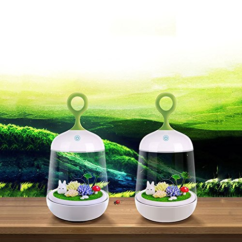 DOXUNGO Natural LED ecological light micro-landscape plant light DIY lights Touch Sensing Colorful LED Charging Night Light Baby Feeding Small Table Lamp Bed Bedside Lamp 51Xd5 wow8L