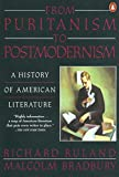 From Puritanism to Postmodernism: A History of American Literature