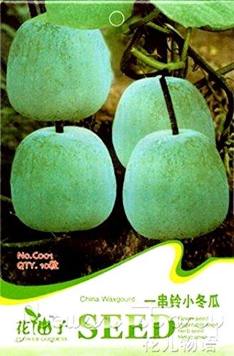 20 Semillas de calabaza chinas también llamadas Melón de invierno - Calabaza de ceniza - Benincass Hispide Thunb - Cogn - En empaque original de vegetales