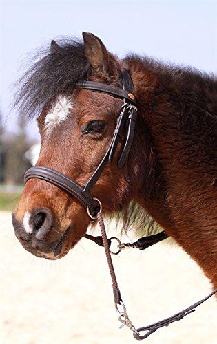 Gebisslose Zäumung Walnut Pony (schwarz)