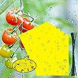 BUZIFU 30 Pcs Pièges à Insectes, Pieges Collants Double Face avec Attaches de Câble Feuilles Jaunes Pièges Anti Blanc de Mouches, Pucerons, Mites pour Jardin Plante Fleur Fruits (19,8X 15 cm)