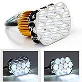 Phares de Moto 10 lumières de LED Haute luminosité Trousse 12V 50W Universel