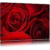 rose rosse Tela, Immagini XXL completamente incorniciata con grandi cornici di cuneo, stampe d'arte sulla foto parete con cornice, più economico di pittura o di un dipinto a olio, non un manifesto o bandiera