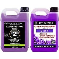 Dirtbusters 3LN 1Clean & Deodorise concentrato 1x