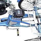 elektro dreirad erwachsene Vergleich