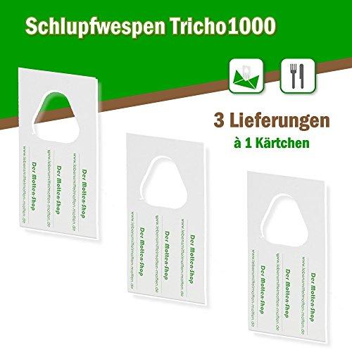 Lebensmittelmotten Einzelkärtchen x 3 Lieferungen ()