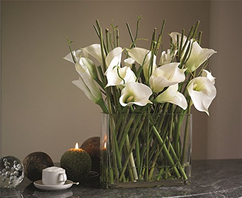 bloom-white-calla-lily-arrangement-slender-stems-green-bamboo-shoots-with-vase
