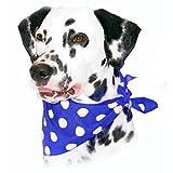 Cosipet Hunde Halstuch mit Punktemuster (Einheitsgröße) (Marineblau)
