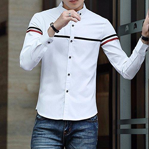 Sono _ Doppio Filati Tinti Con Slim Camicia A Maniche Lunghe Camicia Di Cotone Camicetta white