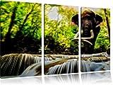 Graceful farfalla blu sul fiore blu foto su tela pittura su tela 120x80, Immagini XXL completamente incorniciato con grandi cornici di cuneo, stampe d'arte sulla foto parete con telaio, più economico di quadri o foto, senza poster o manife